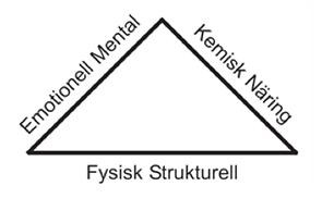 triangel_1.png