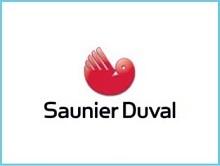 Reparacion calderas calentadores Saunier Duval Madrid