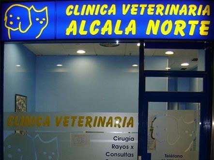 veterinarios en ciudad lineal
