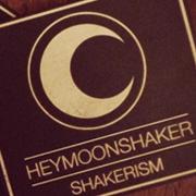 HEYMOONSHAKER Album Design, Graphic Design Herefordshire, Social Media Design Herefordshire, Shakerism Album, Shakerism Album Design