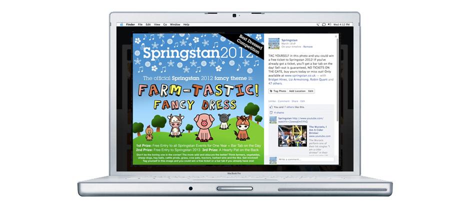 Springstan festival based in Herefordshire asked us to create facebook graphics and marketing for there social media. Facebook design, Social Media Design, Web banner design
